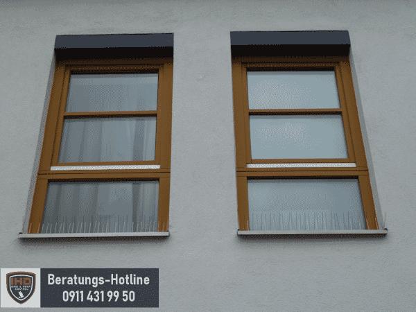 spitzensystem_am_Fensterbrett